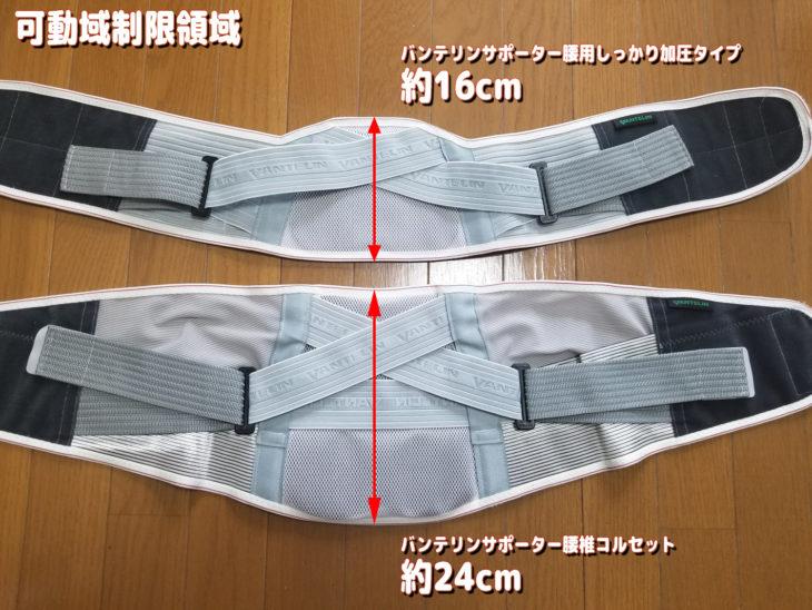 バンテリンサポーター腰椎コルセットのサポート力(可動域制限領域)